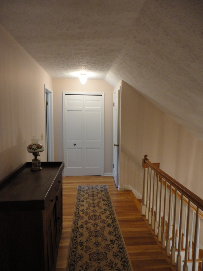 Another before photo. The prior owners gave us the hallway runner, saying that it would be difficult for us to find another that length. Luckily, I like it.